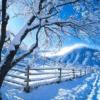 Estações Inverno